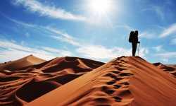 هجرة في سبيل الله