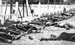 من ملف مأساة العصر في حماة