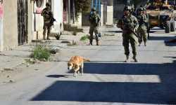 حصاد أخبار الأربعاء - دخول رتل عسكري تركي إلى إدلب تزامناً مع تجدد القصف الروسي، والليرة السورية تهوي أمام الدولار -(13-11-2019)