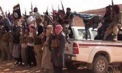 الثورة السورية: داعش، الواقع، هل من حل؟